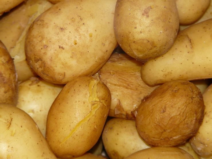 Come cuocere le patate