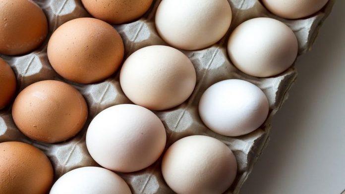 Riconoscere le uova