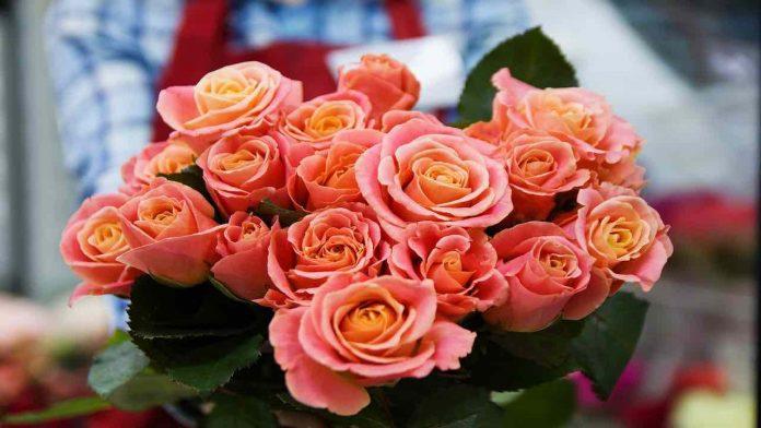 fiori per un uomo quali regalare