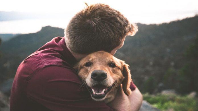 farsi ubbidire dal proprio cane