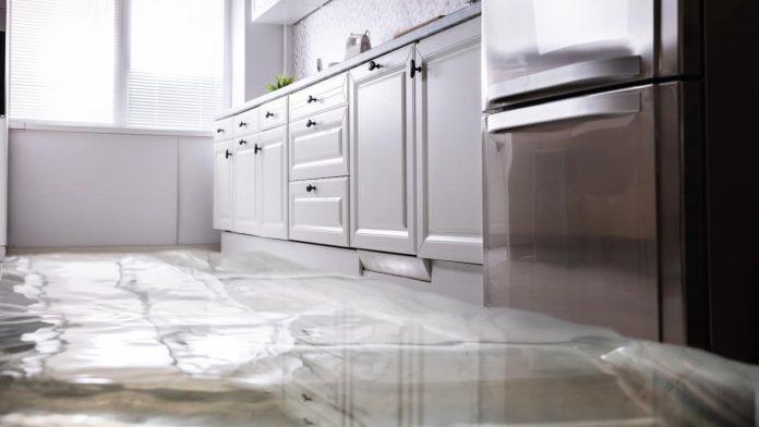 perdite d'acqua frigorifero
