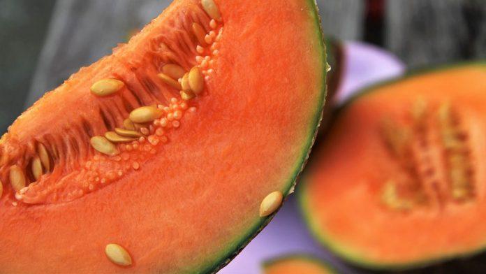Melone: proprietà, benefici e calorie