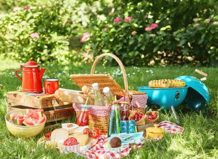 organizzare picnic ideale