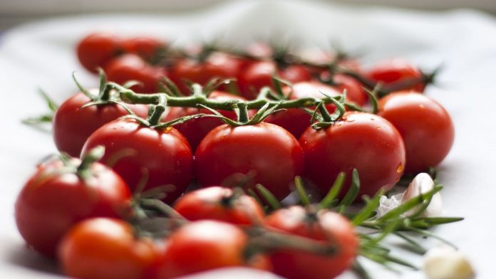 Allergia al pomodoro: i sintomi dai più lievi a quelli più gravi
