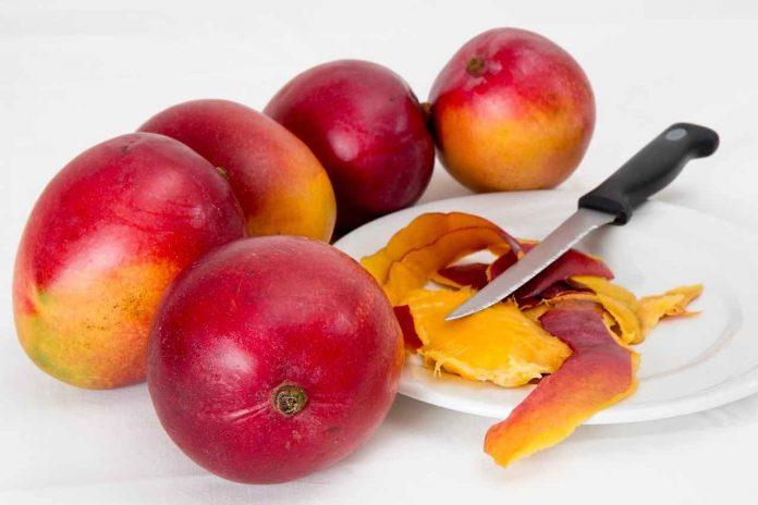 Mango il frutto tropicale