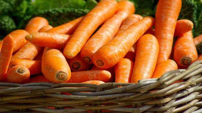 Proprietà delle carote