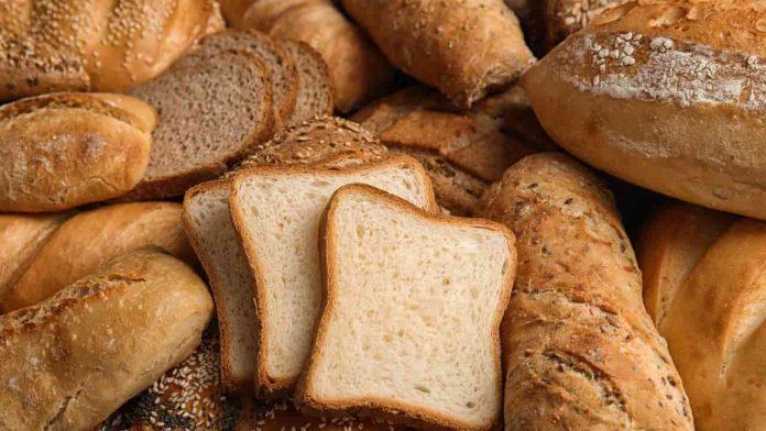 tipi pane calorie