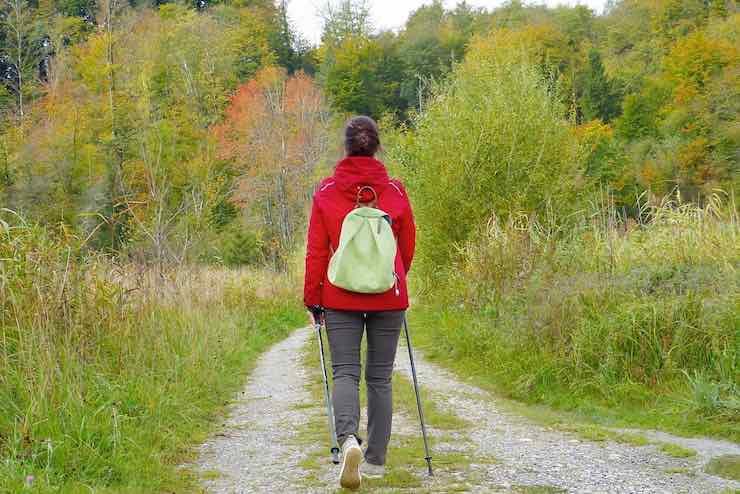 donna passeggia in foresta