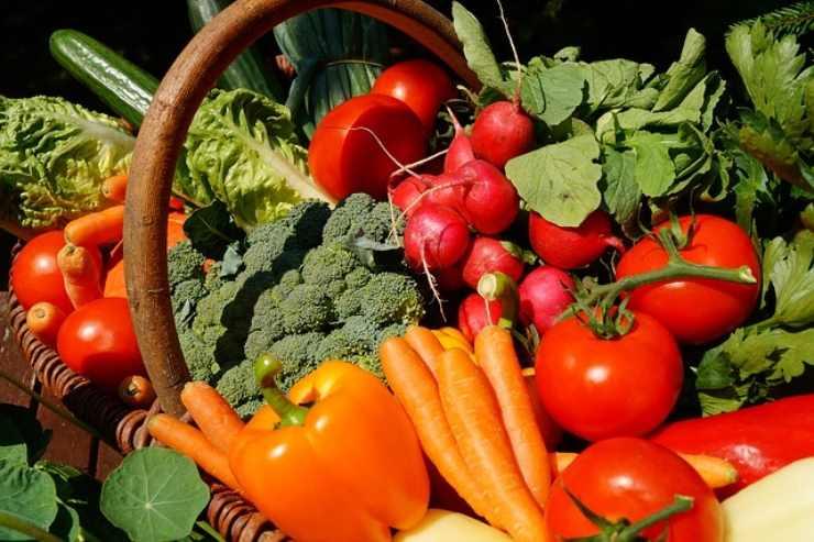 Sei vegetariano? Ecco i sintomi intestinali che dimostrano che fai bene