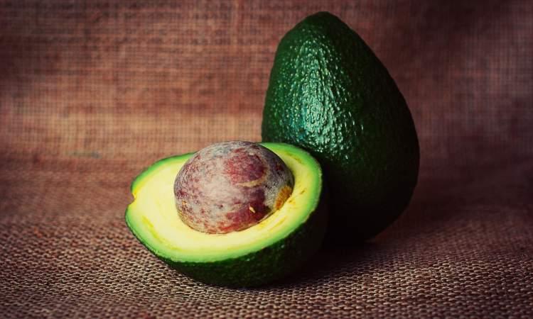 frutto ventre